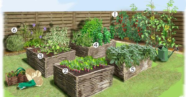 Projet am nagement jardin potager au carr potager verger pinterest amenagement jardin for Jardin au carre