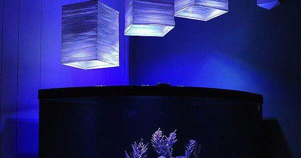 Reef tank work pinterest acuario peceras y peceras - Peceras en casa ...