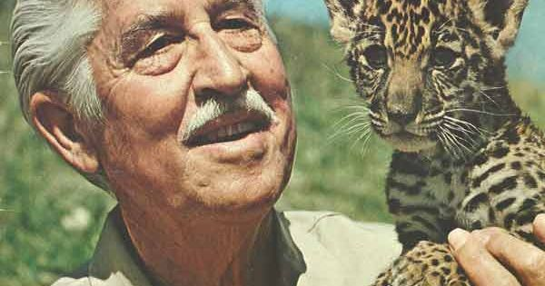 Mutual of Omaha's Wild Kingdom (1963), with Marlin Perkins... every Sunday night
