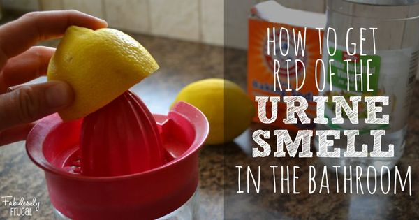 How To Eliminate The Urine Smell In The Bathroom Recipe