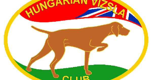 The Hungarian Vizsla Club of the UK -- great information on the ...