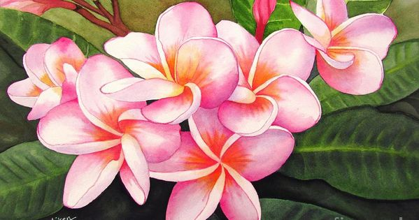 Pin By Sheri Shimogaki Lemrick On Vasile In 2020 Flower Painting Canvas Acrylic Painting Flowers Watercolor Flowers