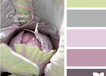 Cabbage hues. This would be a pretty color combo for an afghan...
