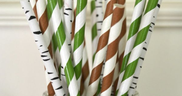 25 Paper Straws, Backyard Camping theme Birthday, Woodland Party, Nature party, Rustic