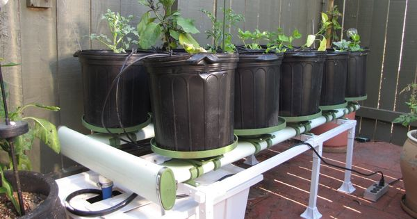 Grow Fish And Vegetables In Your Garage With Aquaponics Aquaculture Zimbio Aquaponics
