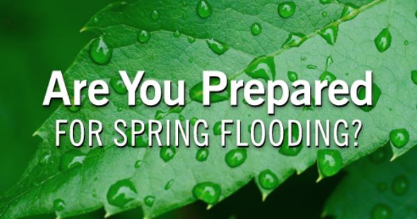 Are You Prepared For Spring Flooding Spring Weather Patterns Can Increase The Risk Of Flooding Flood Insurance Will Help Yo Flood Risk Flood Insurance Flood
