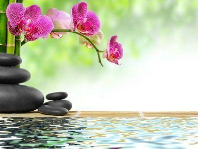 L Instant Zen Les Blablas De Dame Papote Fond Ecran Zen Deco Stickers Fond D Ecran Orchidee