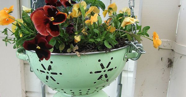 Colanders repurposed to flower pots – Colanders are great because they have