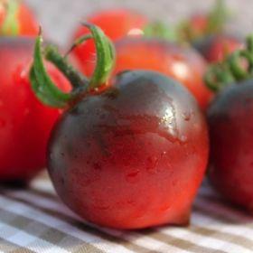 Tomate H34 Rot Jolie Coeur Tomaten Tomaten Sorten Tomaten Garten
