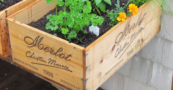 DIY herb garden using wine boxes.