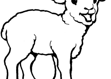 Little Lamb coloring page from Domestic sheep category