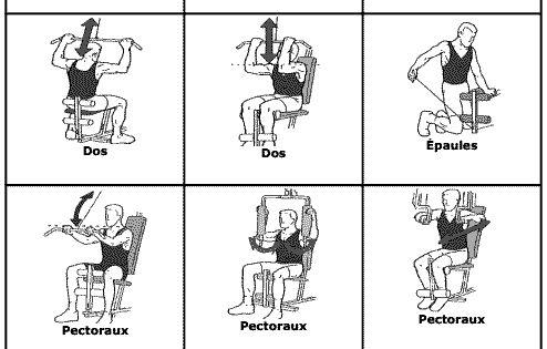 banc de musculation ou appareil complet que choisir exercices de musculation musculation. Black Bedroom Furniture Sets. Home Design Ideas