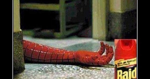 Demotivational Posters Meme Spiderman Meme Raid Spiderman