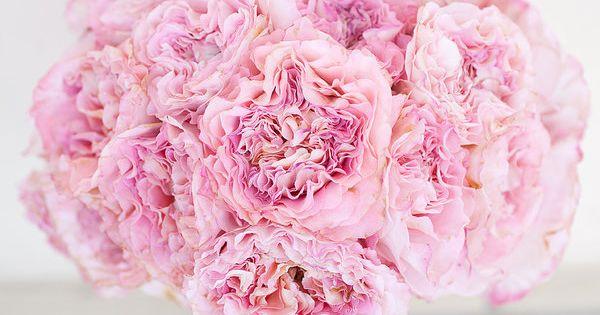 cottage rose bouquet. love the texture.