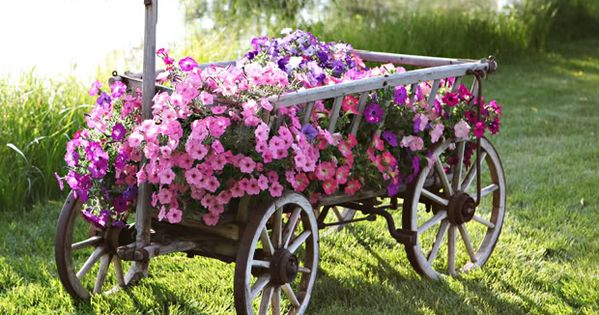 Great way to repurpose!!! Adds interest and beauty to your outdoor space