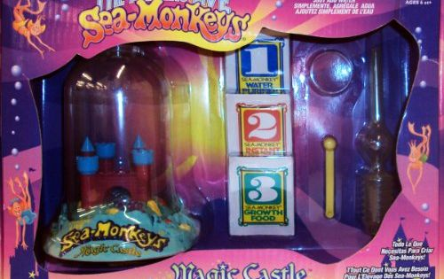 The Amazing Live Sea Monkeys Magic Ca For Only 17 50 Sea