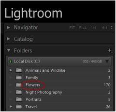 Where is lightroom catalog stored
