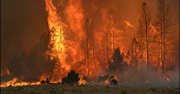 Oregon Wildfire Updates Holloway Slows Barry Point Grows Oregon Lakes Lake View United States Forest Service