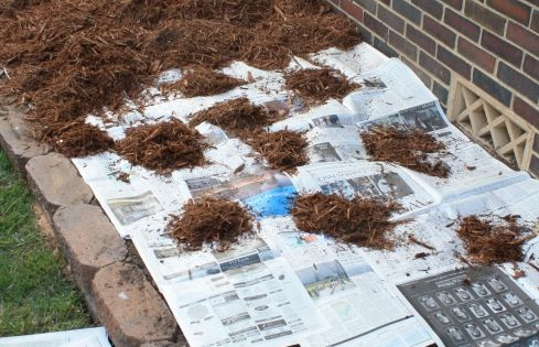 ...Keep weeds out of flower bed This really works - we did