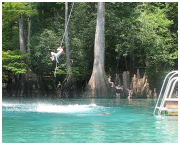 Swing From A Rope Into A Lake Florida Springs Waterway Rope Swing