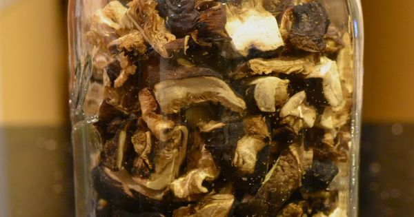 Holy Shiitakes! How to Dehydrate Mushrooms and Feast on Fungi for Months.