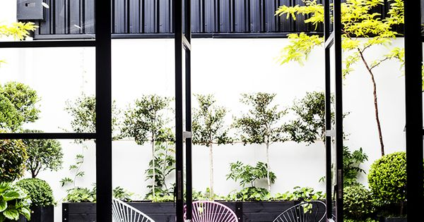 Contemporary courtyard at Mildred & Co, Auckland | contemporary courtyard - black