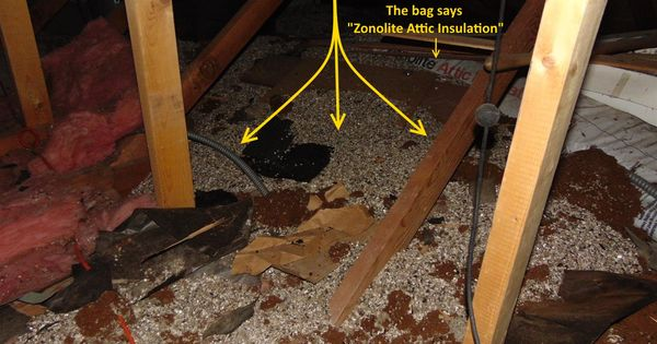 Vermiculite Insulation And Mould Asbestos Analysis