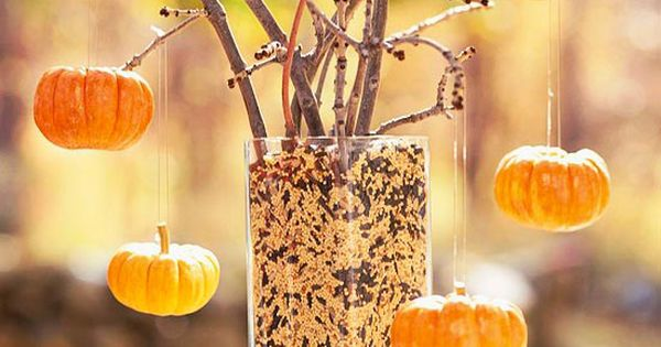 Outdoor Halloween Tree for the Birds & Squirrels