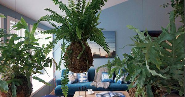 Int rieur scandinave bleu cuisine noire et lambris bois for Deco interieur blog