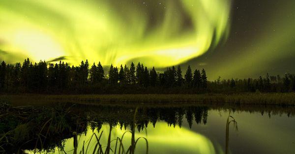 Auroras Boreales desde el Parque Nacional Isla Elk, Alberta, Canadá.- We see