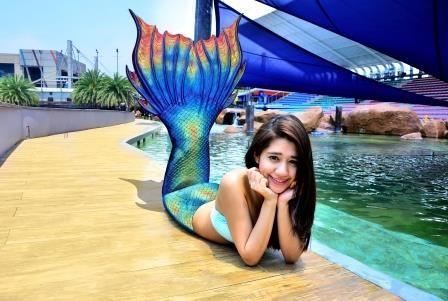 Manila Ocean Park Attractions Encounters Mermaid Photo Shoot Ocean Park Marine Theme