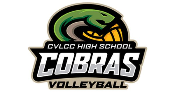 Cobras Volleyball Video Games For Kids Volleyball Designs Volleyball