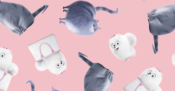 Secret Life Of Pets Chloe And Gidget Toss Pink Cumpleanos De Perro La Vida Secreta De Tus Mascotas Mascotas