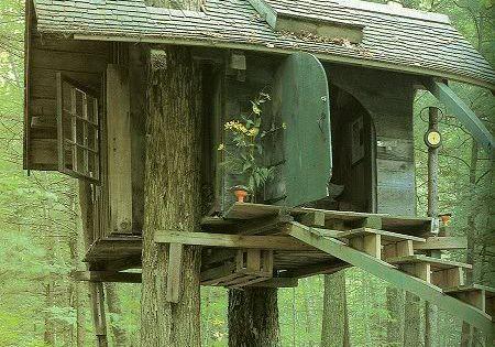 Treehouse treehouse