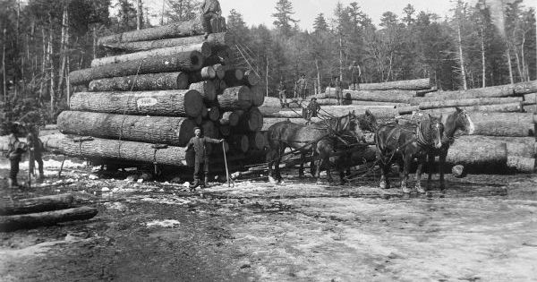 Four horse log load photograph wisconsin historical for Furniture history society
