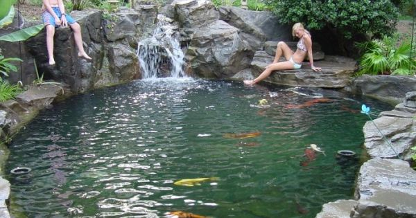 koi pond/swim pond. how cool is that! This would be awesome in