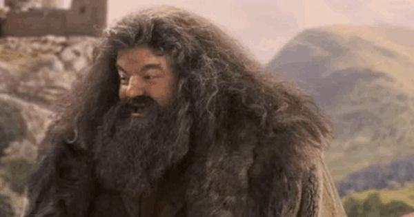 16 Reasons Hagrid Is The Harry Potter Character With The Biggest Heart Harry Potter Quiz Hogwarts Quiz Harry Potter Personality