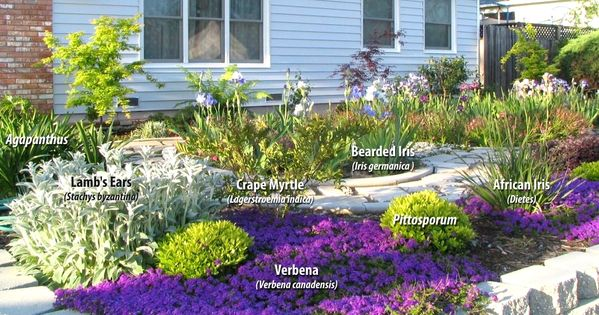 Drought tolerant landscape california some native for Weeds garden maintenance