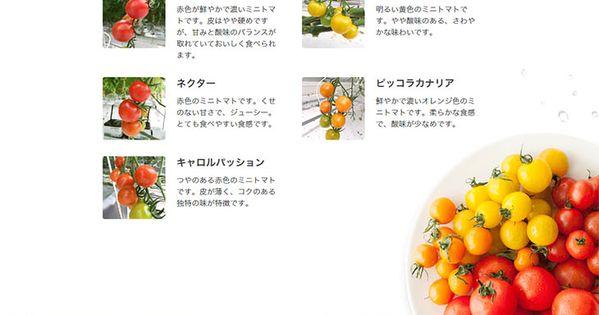 こだわりのトマト 食品関連 のlpデザイン Webデザイナーさん必見 ランディングページのデザイン参考に シンプル系 Lp デザイン トマト デザイン デザイン