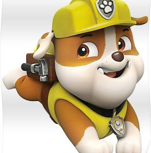 Paw Patrol Birthday Paw Patrol Birthday Paw Patrol Pups Paw Patrol Rocky