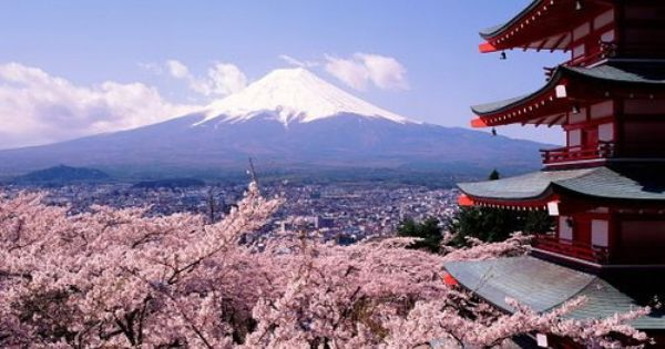 Japan During Cherry Blossom Most Beautiful Places Places To Travel Mount Fuji Japan