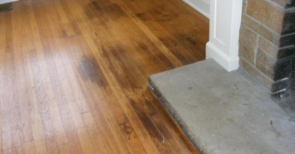 How to clean pet urine from wood floors stepbystep just for How to clean floor stains