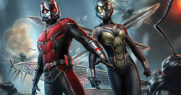 Disney Fan Collector Las Escenas Post Créditos De Ant Man Y La Avispa Magníficos Personajes De Marvel Superhéroes Marvel