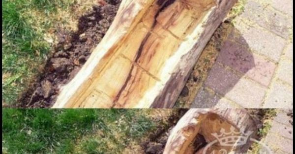 Check out these amazing upcycled tree stump and log ideas for Upcycled tree stumps