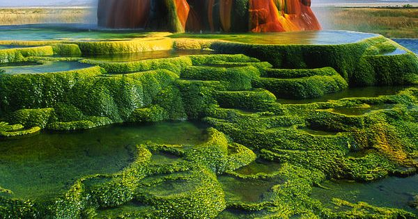 Green Fly Geyser (Nevada) by Inge Johnsson This is so cool!