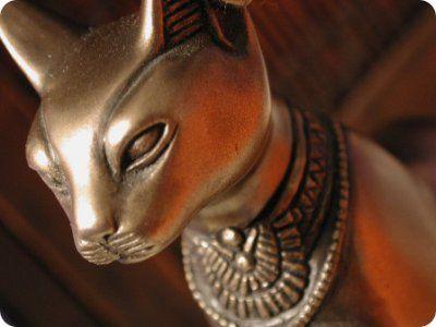 Los Gatos Estaban Considerados Como Animales Sagrados En El
