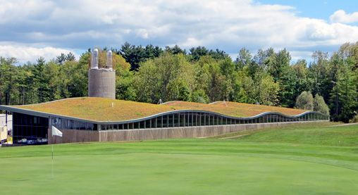 Extensive Green Roofs Using Zinco Usa Technology Extensive Green Roof Green Roof Biomass