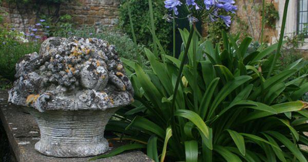 Coton manor garden tuin tuinen en blauwe bloemen - Decoratie jardin terras ...