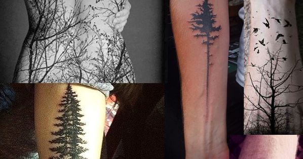 Tree Tattoos | The 13 Kinds Of Tattoos We All Wanted In
