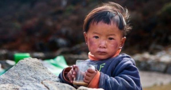 Herbata W Tybecie Baby Face Children Baby